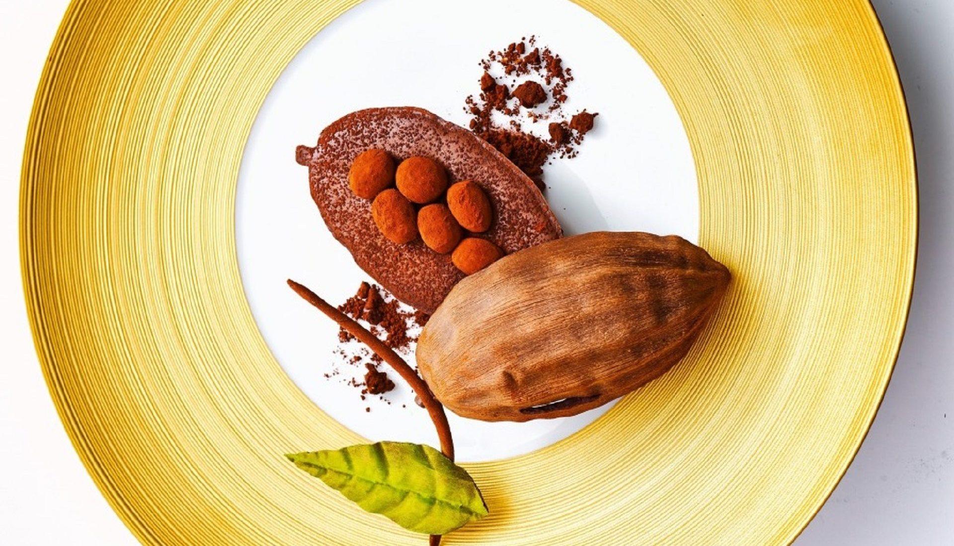 La cabosse de chocolat du Pérou