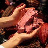 Barry Callebaut revela Rubi, o quarto tipo de chocolate.