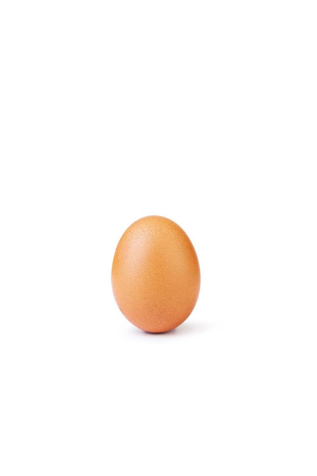 A polêmica do ovo do William Bonnner